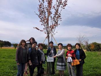 記念植樹エゾ桜.jpg