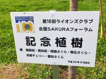 記念植樹プレート (1).jpg